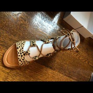Dolce vita never worn leopard sandals
